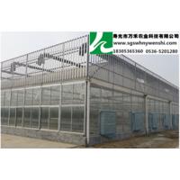 供应玻璃文洛智能温室
