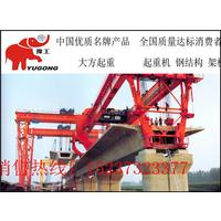 河南大方重型机械有限公司供应提梁机