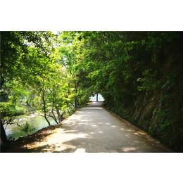 輝煌園林 綠化造景工程 建筑綠化 園林綠化