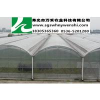 供应圆拱型文洛智能温室