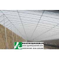 专业提供冬暖式大棚之全钢架