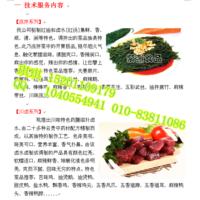 嘉州紫燕百味鸡加盟总部