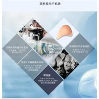2016江门欧丽义乳厂家轻质义乳加盟供应批发