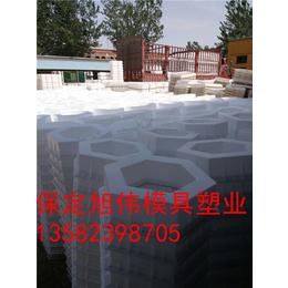 塑料六角护坡模具生产加工