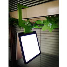 户外创意礼品新野营帐篷灯停电应急宿舍照明灯衣柜橱柜灯小夜灯