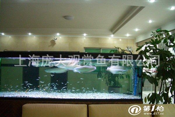 水景鱼缸 水景屏风 玻璃屏风 办公室水景 室内景观 鞋柜玄关