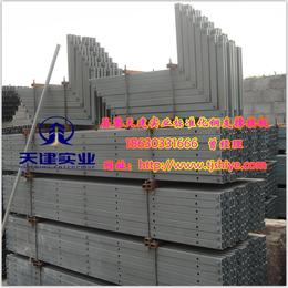 新型剪力墙模板支撑 天建实业新型模板加固体系