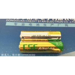高容量AA碱性电池,5号碱性电池,LR6电池,沃尔玛认证