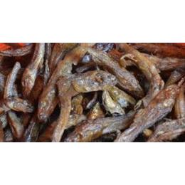 修水棍子鱼 原汁原味 鲜美又营养  江西土特产 屋背山上网上销售