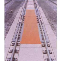 50吨轨道衡秤GCS-50T轻轨秤