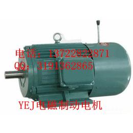 YEJ电磁制动电机YEJ225M-45KW-2极电动机