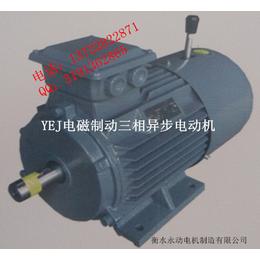YEJ180L-15KW-6****电磁制动电机永动亚博国际版