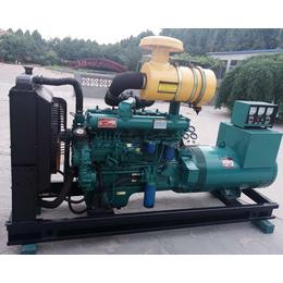 潍坊发电机组分为标准型 移动型 静音型