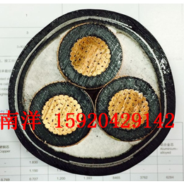 广州南洋电缆 国标VV 1x70 YJV VV南牌电缆