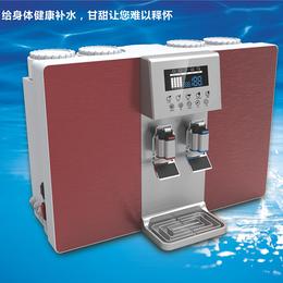 供应净水器直饮加热一体机反渗透无桶净水器家用净水器批发