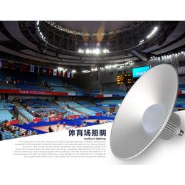 LED投光灯30w工矿灯泛光灯路灯投射灯户外室外防水