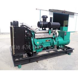 供应潍坊厂家货源最充足的潍柴120千瓦柴油发电机组