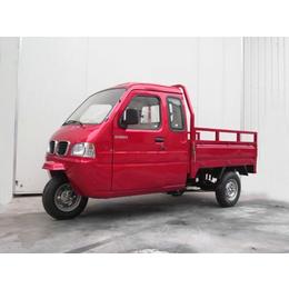 供应大阳三轮摩托车 DY250ZH-6 封闭式三轮车报价