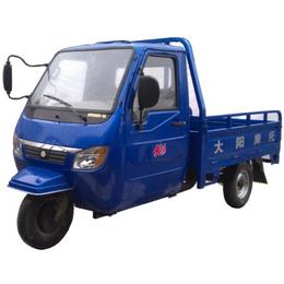 供应大阳DY250ZH-5A三轮摩托车 载运三轮车 半封闭