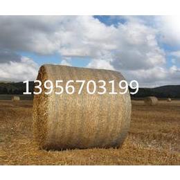 供应牧草捆草机网圆捆机网
