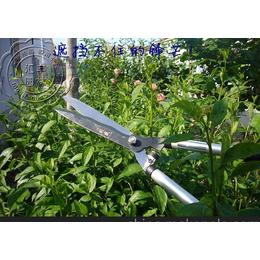 台湾刘盛树枝剪波浪刀刃原装进口园林工具特价H-219L