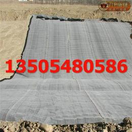 土工膜价格_蓄水池防渗HDPE土工膜_惠农区HDPE土工膜