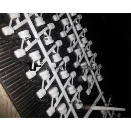 龙三塑胶配线器材厂4N-4认证美规电源线扣