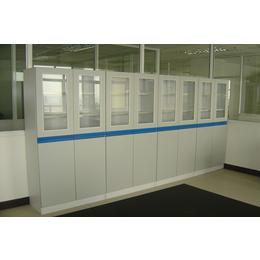 供应广西药品柜 实验室药品柜 铝木药品柜价格