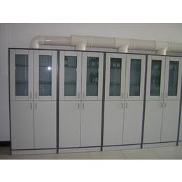 供应柳州药品柜 实验室药品柜南宁生产厂家
