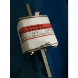 芬隆RS39快速熔断器订做