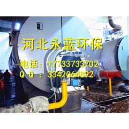 10吨立式燃煤锅炉改装生物质锅炉工程费用