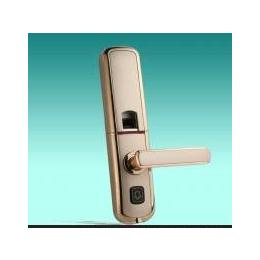 高级智能指纹、密码、钥匙带无线门铃功能的入户、别墅锁、办公锁