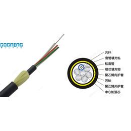合肥ADSS-24B1-100光缆