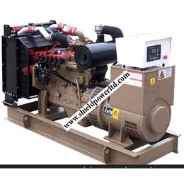 天然气发电机组,26KW燃气发电机组