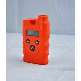 加油站专用汽油浓度检测仪当地经销商
