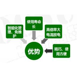 安徽锂电池系统_电厂储能锂电池系统_善豹能源科技