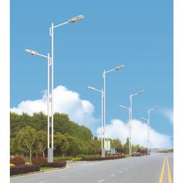 资阳LED路灯厂家报价市电路灯道路照明LED路灯参数图片