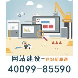 天津网站建设,天津网站建设报价,世纪新联通(多图)缩略图