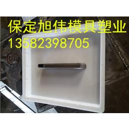 塑料沟盖板模具 水泥沟盖板模具厂