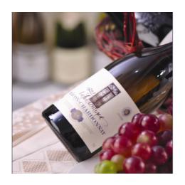 江西红酒代理 马贡村干白葡萄酒经销