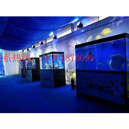 各种观赏鱼缸定制展览海洋展方案海洋展出租缩略图
