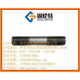 双头螺栓国标高强度螺栓生产厂家固伦特M10优质双头螺丝