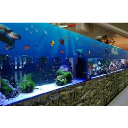 活体海洋展价格海洋生物展海洋展租赁