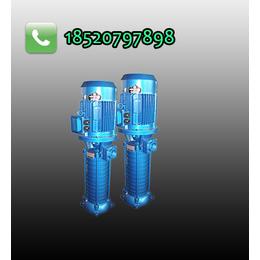 源立水泵 厂家直销 VMP40-5系列多级离心泵