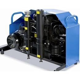 正压式呼吸器MCH16 ET Standard空气填充泵