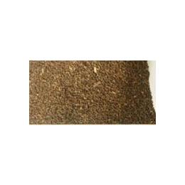 大量提供优质中药材种子 千金子种子 质量好 价格优惠