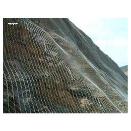 边坡防护高强度勾花网  建筑安全防护网 山体防护网