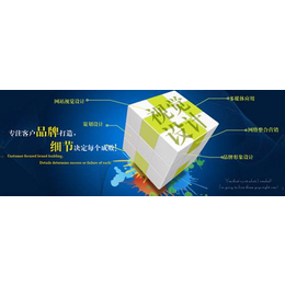 临淄网站设计,山东正舟信息,网站设计方案