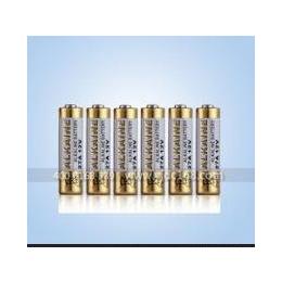 惠州永劲供应12V27A电池12V27A组合电池厂家特价批发
