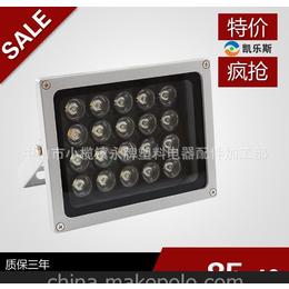 户外LED聚光20W投射灯 街道树木绿化射灯